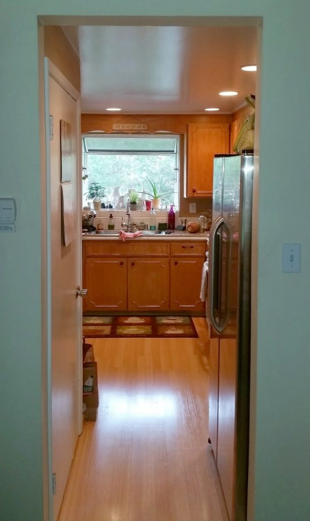Kitchen view from entryway before renovation
