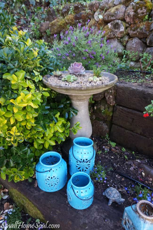 Succulent gardens are easy to plant and they are a pretty and low maintenance addition to any yard. www.smallhomesoul.com