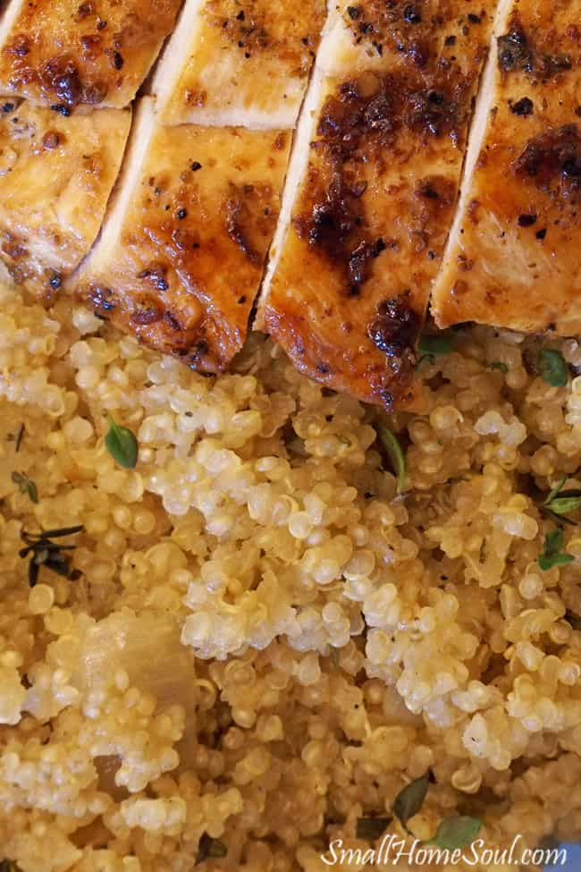 Closeup of savory quinoa and chicken dish with fresh herbs.