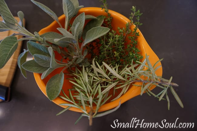 Fresh thyme, rosemary, and sage herbs in orange bowl on counter.