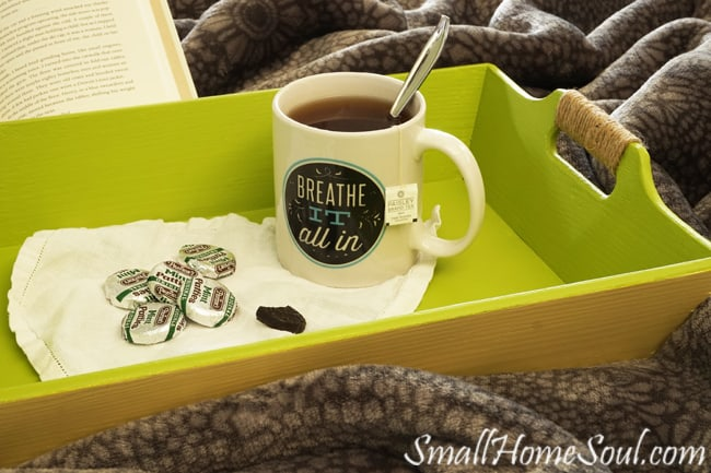 Do you have an old or ugly tray? You can get a similar look as I did with my forgotten gift tray makeover with just a few supplies. www.smallhomesoul.com