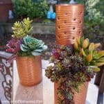 Recycled Tin Can Lantern & Planter – Reduce & Reuse Decor