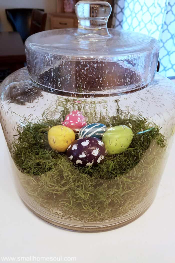 Group of completed painted easter eggs on green moss inside glass terrarium.