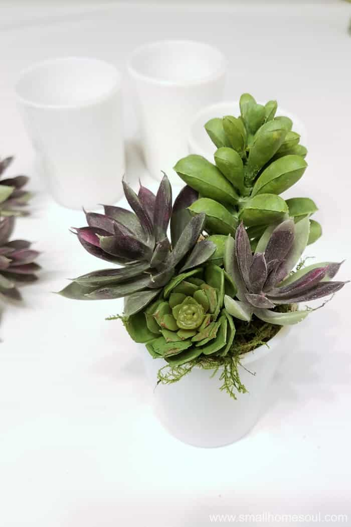 Everyone will love receiving this beautiful milk glass succulent planter.