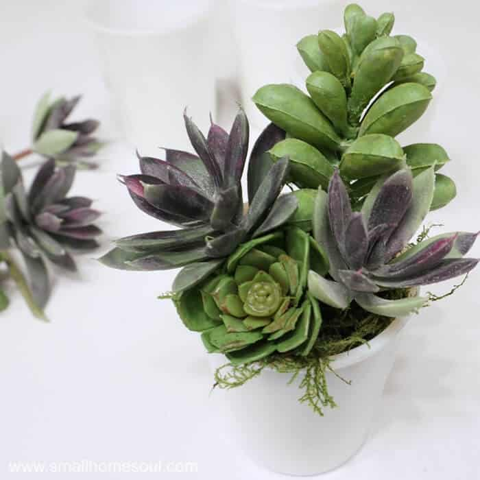 Vintage collectors will enjoy creating this easy milk glass succulent planter.
