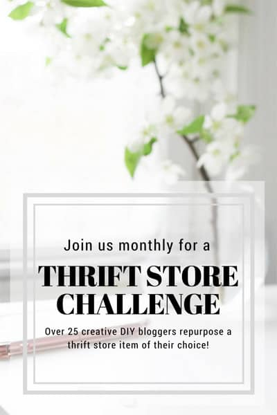 Thrift Store Challenge group image.