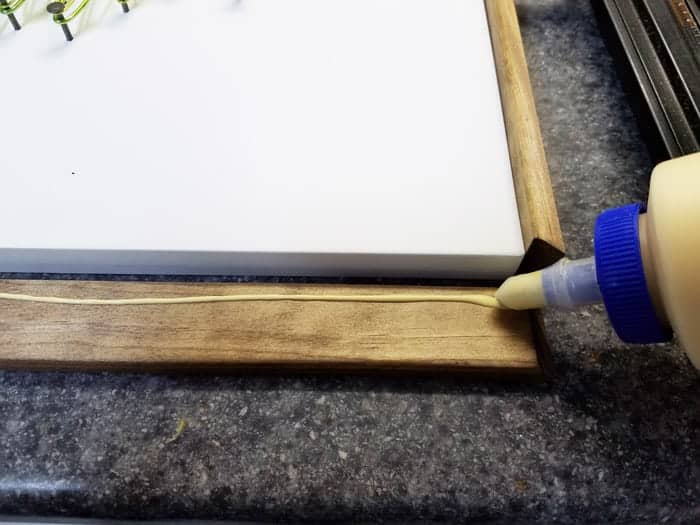 Wood glue on frame pieces.