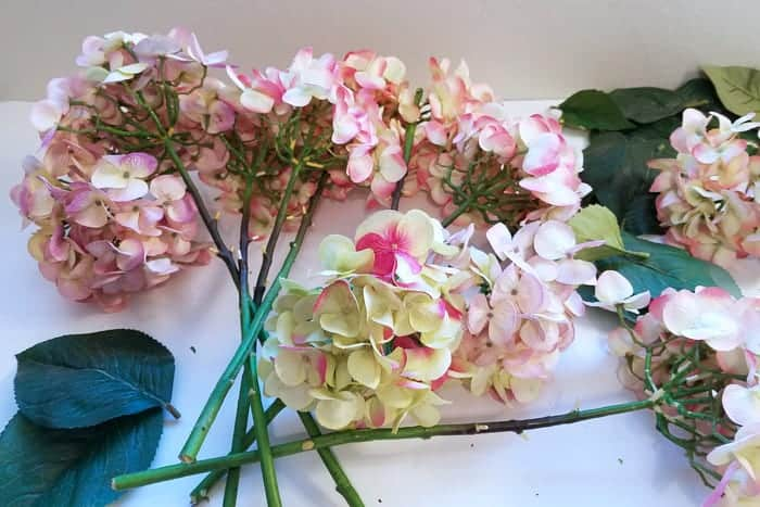 Hydrangea flowers with long stems on table.