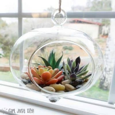 Hanging faux succulent terrarium hanging in a windowsill.