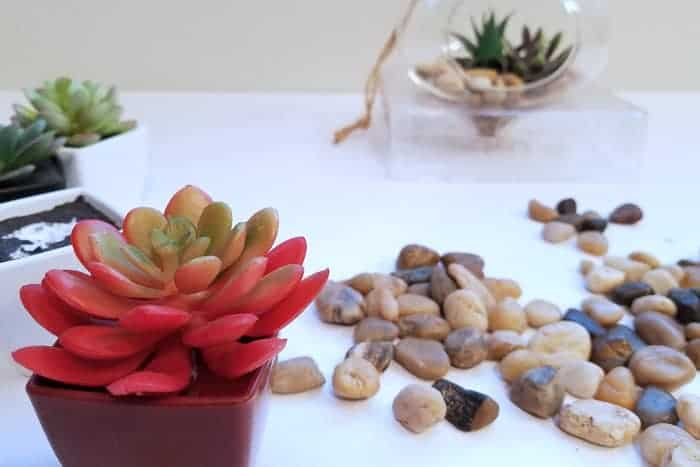 Red faux succulent near rocks with hanging terrarium in background