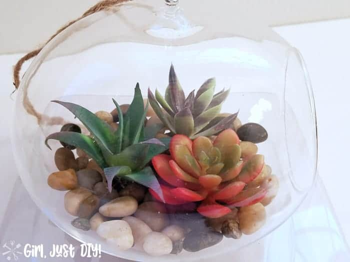 Top view of hanging faux succulent terrarium with three succulents and rocks visible.