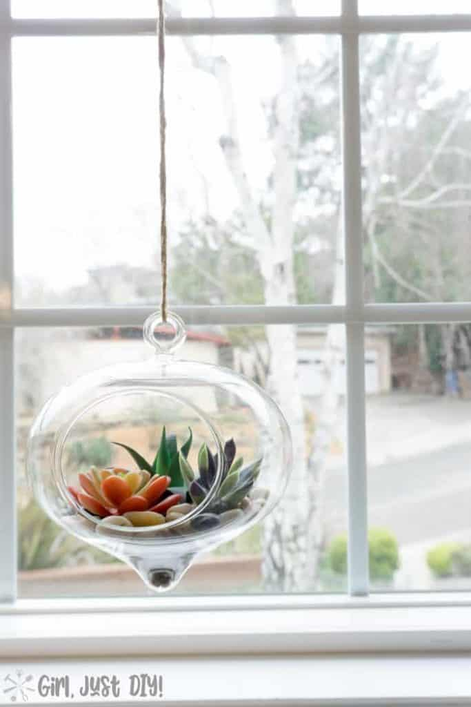 Faux Succulent Terrarium hanging in window sill.