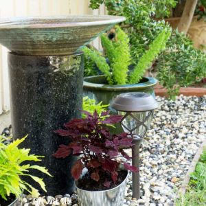 Birdbath with potted plants on rock flower bed.