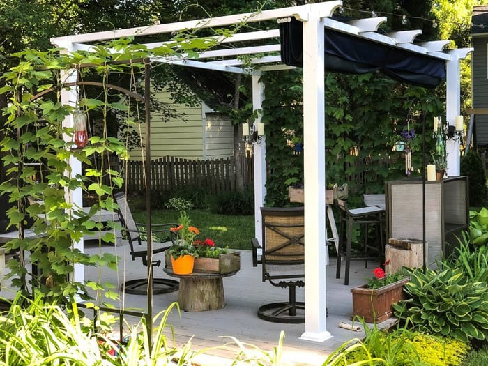 White Pergola on patio with dining table and trailing vines.