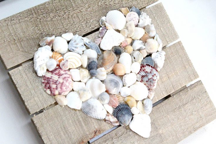 How to Make DIY Seashell Wall Art | Easy Craft for the Home