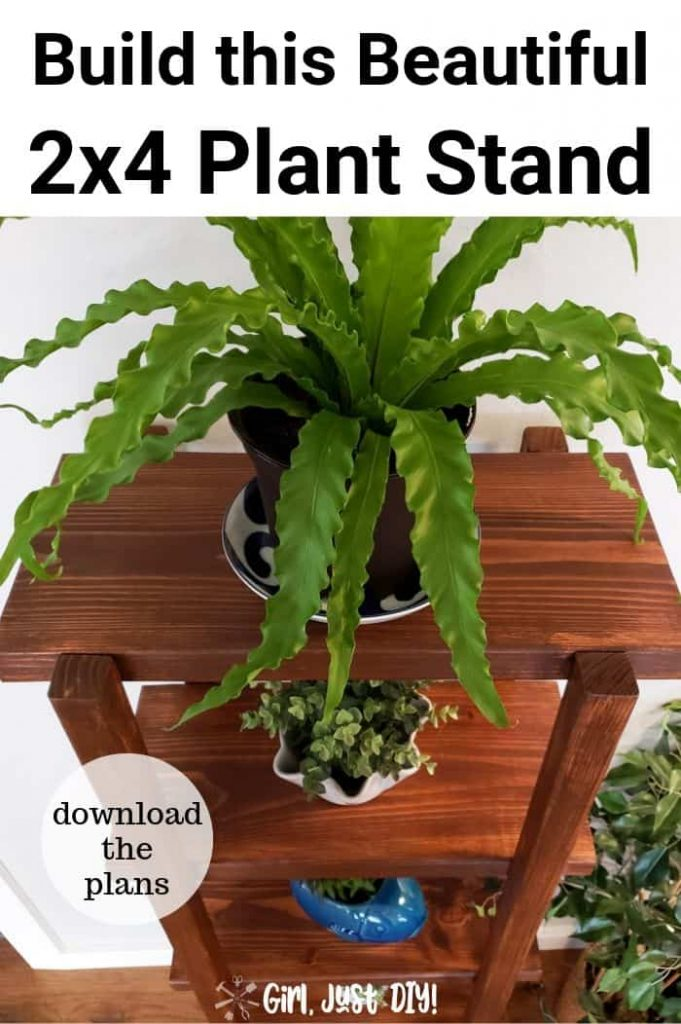 Plants on top of DIY 2x4 Plant Stand in a pinterest image.