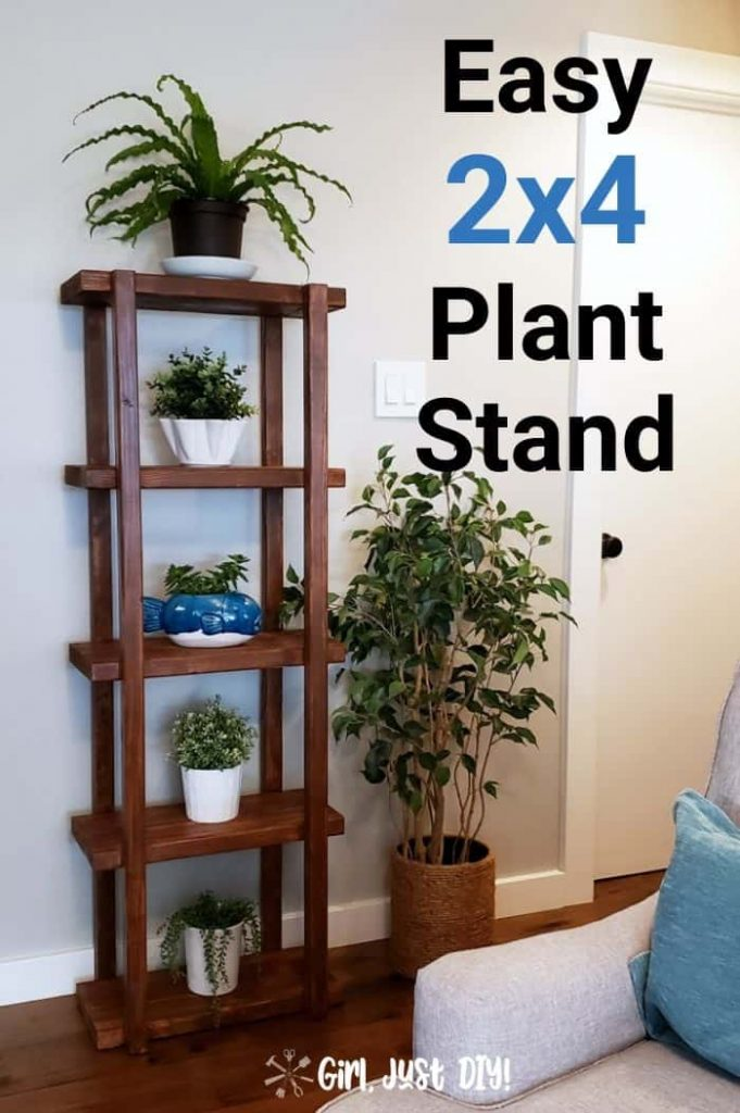 DIY 2x4 Plant Stand in Hallway filled with houseplants.