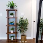 DIY 2x4 Plant Stand with Build Plans