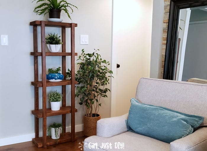 2x4 Plant Stand filled with houseplants against wall in hallway.