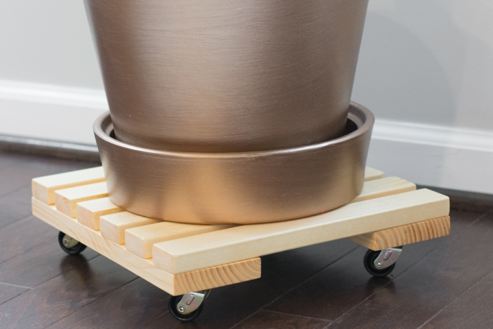 DIY Rolling Plant Caddy: How to Build an Easy Rolling Plant Stand