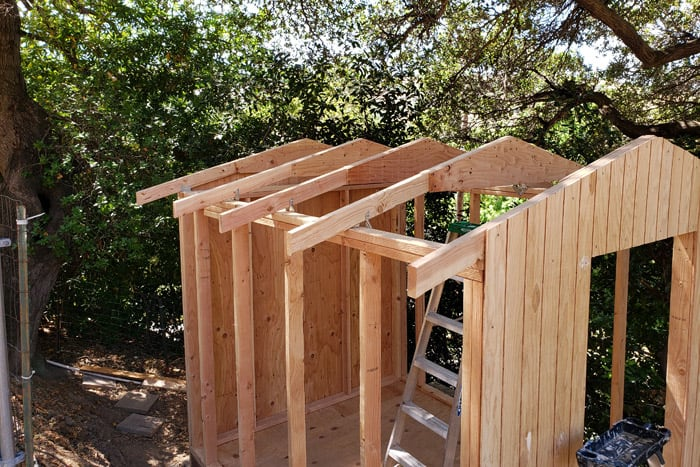 Shed framed and partially sided.